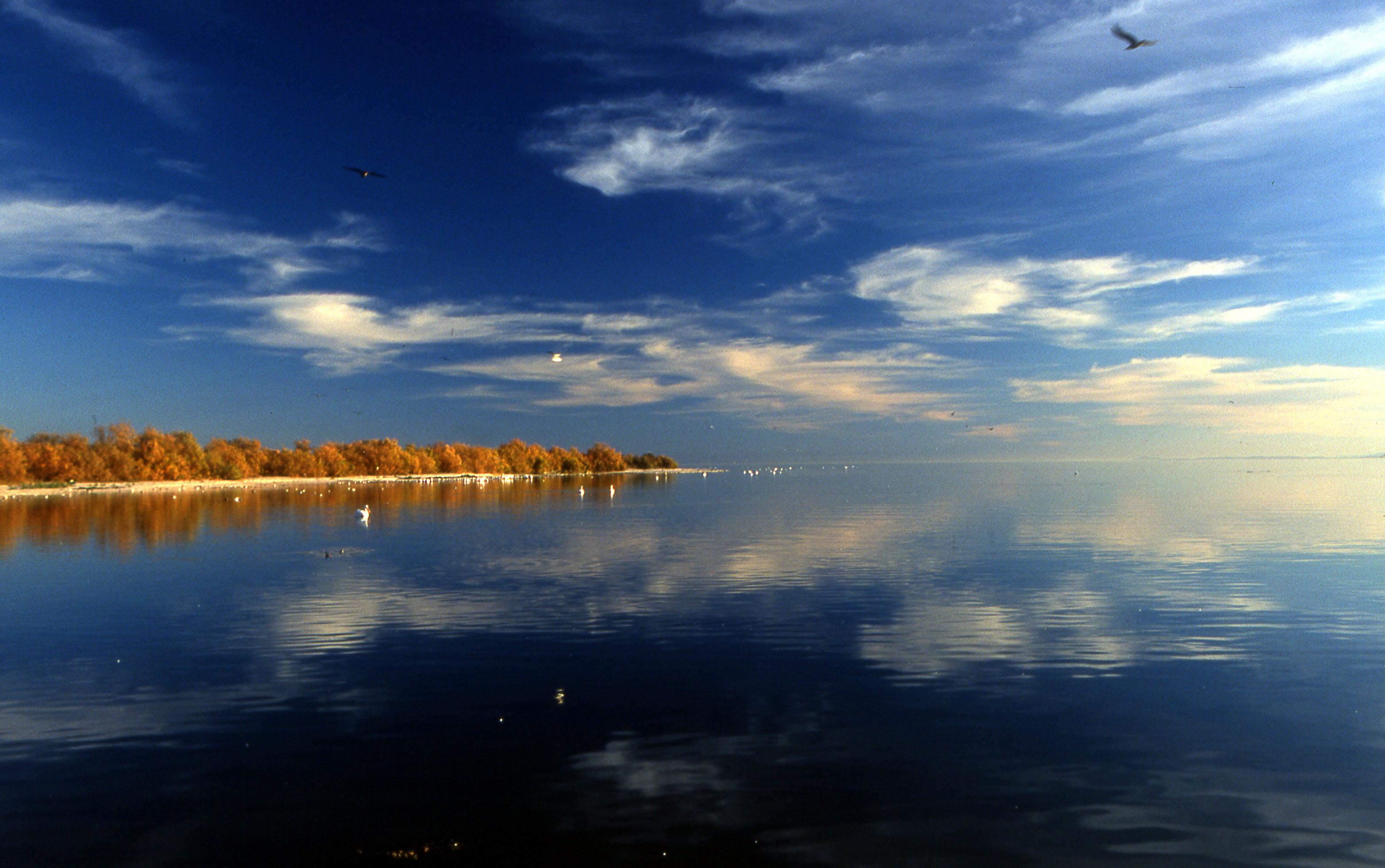 the accidental creation of the salton sea