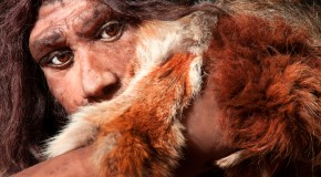Where Did All the Neanderthals Go?