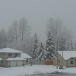 winter-340x206