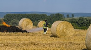 Why Does Moist, Baled and Stacked Hay Spontaneously Catch Fire?