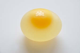 egg-without-shell
