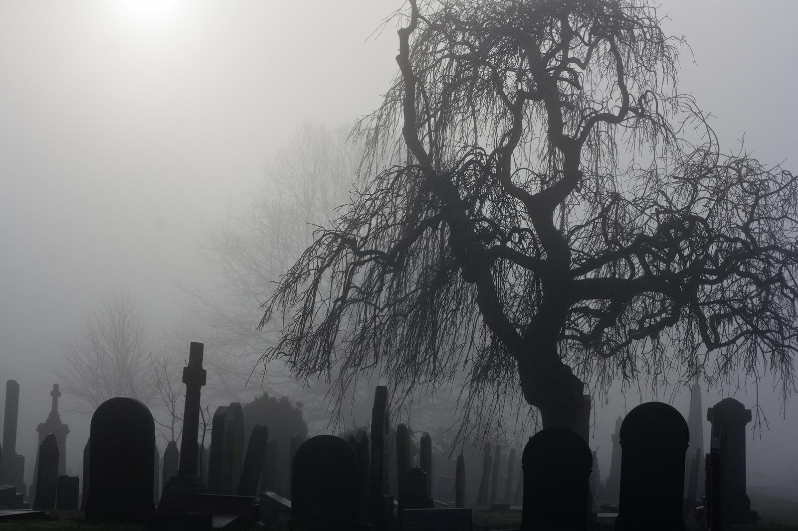 spirit halloween pay period