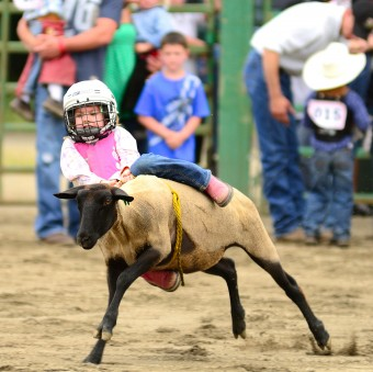 first-rodeo