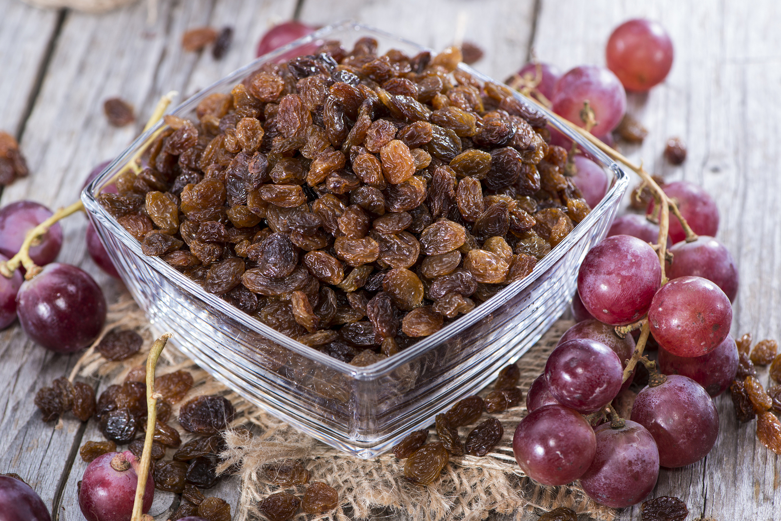 Slikovni rezultat za raisins