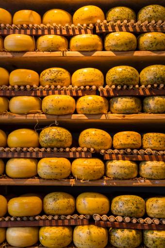 cheese-wheels