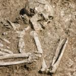human-bones-340x508