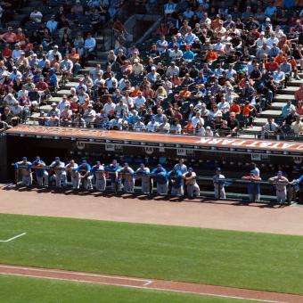 baseball-dugout2