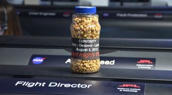 curiosity-peanuts