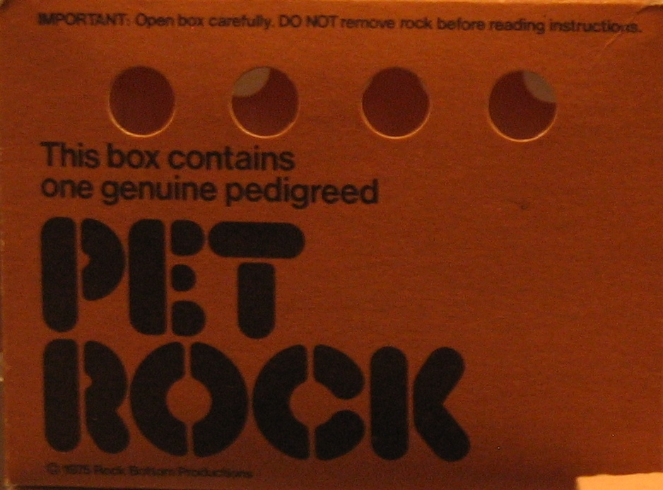 pet rock care instructions