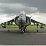 Harrier-340x228