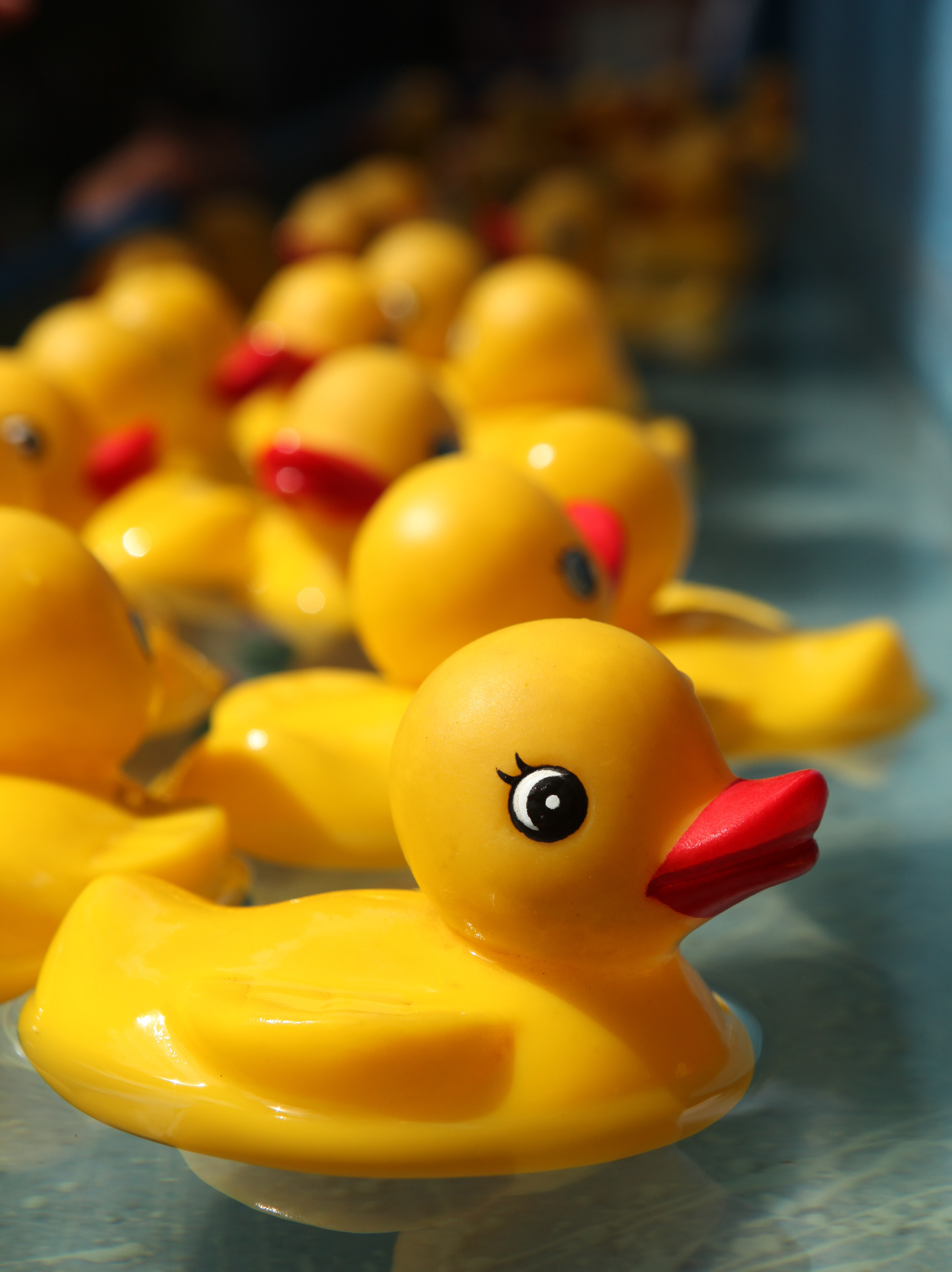 Rubber Duckies Started Making Bath Time