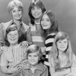 the_partridge_family-340x418
