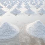 sea-salt-340x227