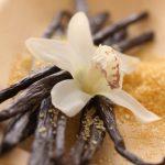 vanilla-bean-340x510