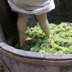 woman-pressing-grapes-340x470