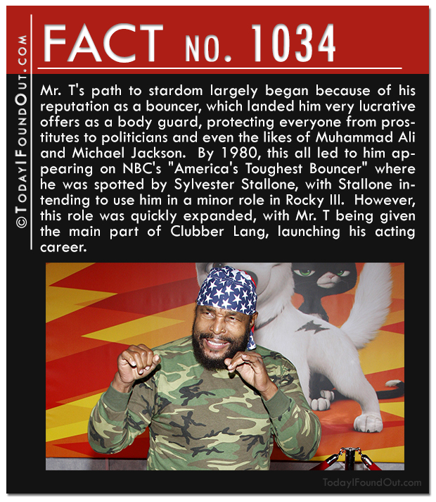 QF-1034-mr-t-bouncer