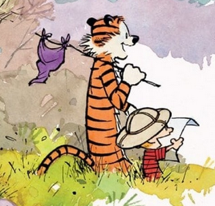 Image from Exploring Calvin and Hobbes - An Exhibition Catalogue