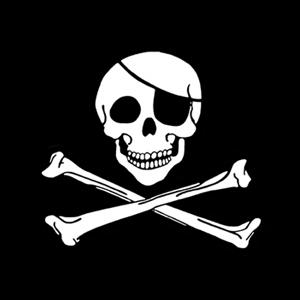 Pirates Logo Skull Origins of the Jolly R...