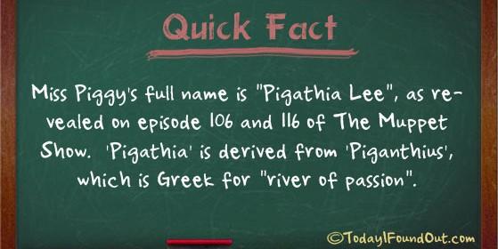 Miss Piggy Facts