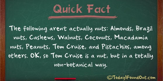 Nut Facts