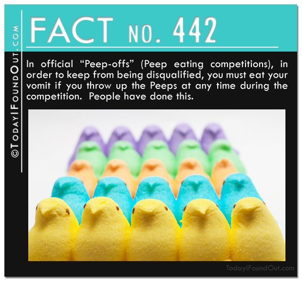 TIFO Quick Fact-In official Peep-offs Peep eating competitions, in order to keep from being disqualified, you must eat your vomit if you throw up the Peeps at any time during the competition.  People have done this