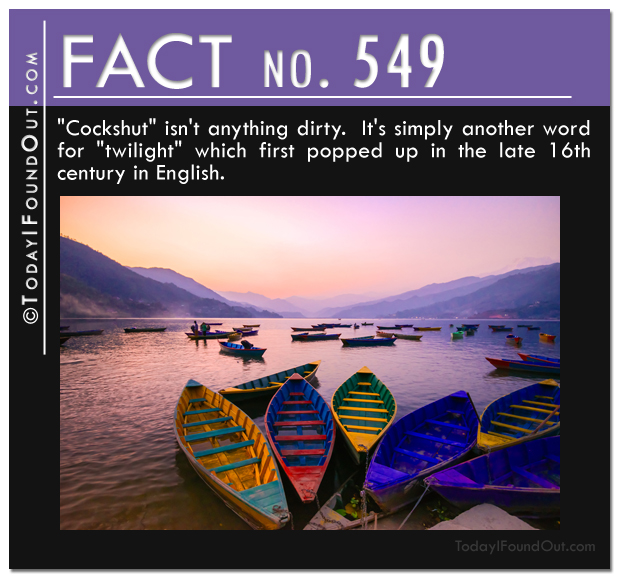 twilight-fact-2