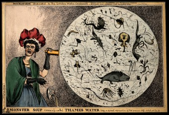 """Monster Soup"", by William Heath (1828) depicting a magnified drop of Thames water"