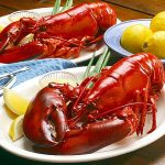 Why-lobsters-and-crabs-turn-red-when-cooked
